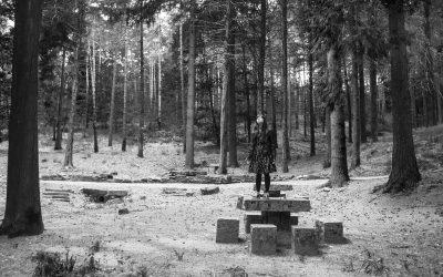 """""""A Floresta das Almas Perdidas"""" na lista da Newsweek como um dos melhores filmes de horror de 2017"""